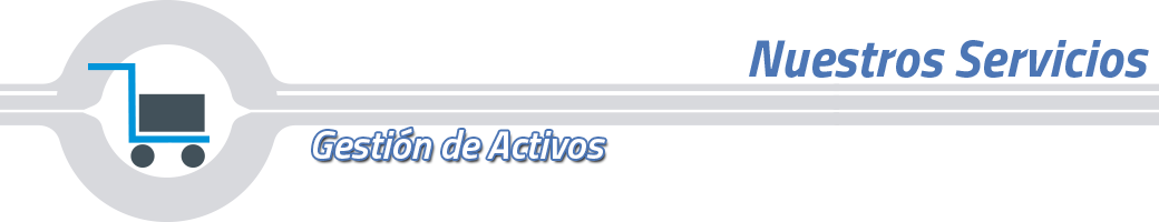 banner-gestion-activos.png